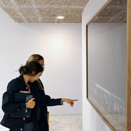 Careers in the Art World – Webinar